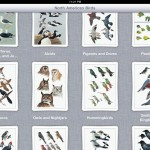 Review: Peterson Birds of North America iPad/iPhone