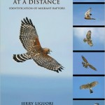 Review: Hawks at a Distance by Jerry Liguori