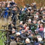 A Photo Guide to Birders
