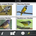 Larkwire – Bird song learning 2.0