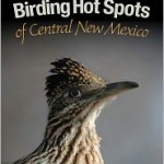 Review: Birding Hot Spots of Central New Mexico