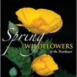 Review: Spring Wildflowers of the Northeast, A Natural History