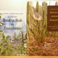 Figure 1. Here is a comparison of both Atlases of Breeding Birds of Pennsylvania. Check out the cool artwork theme, both painted by Julie Zickefoose!