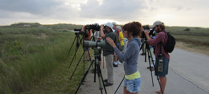 PSO Group birding Pea Island NWR Photo by Andy McGann