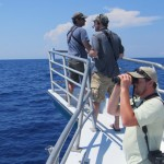 NC PSO Hatteras Pelagic Trip, part 2