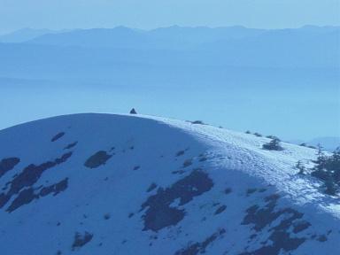 Possible image of Sasquatch in Washington State (photo courtesy of BFRO)