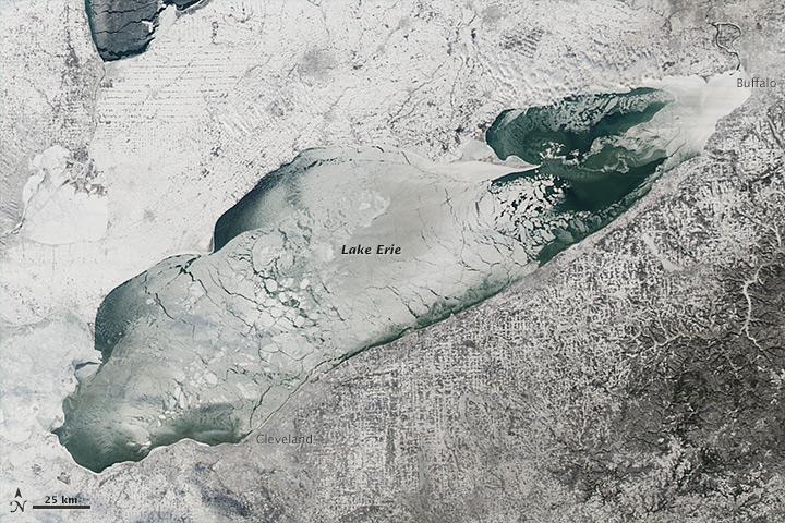 Lake Freeze Out Grebe Fall Out By Alex Lamoreaux