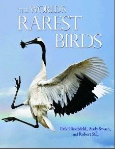 theworldsrarestbirds