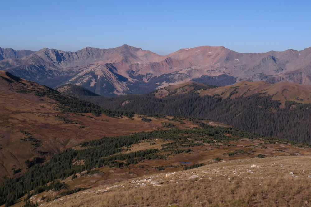 Viewed from Trail Ridge Road, the final reaches of evergreens meet the treeline.
