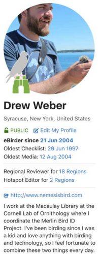 profile-profile